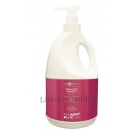HAIR COMPANY Head Wind Extra-Gloss Shampoo - Шампунь экстра-блеск