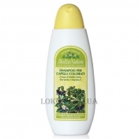 BEMA COSMETICI BioEcoNatura Shampoo for coloured hair - Шампунь для окрашенных волос