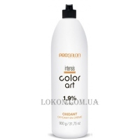 PROSALON Intensis Color Art Oxydant vol 6 - Окислитель 1,9%