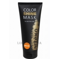 ARTEGO Color Shine Mask Melon - Маска